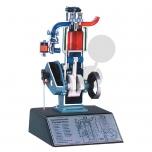 Model čtyřdobého spalovacího motoru