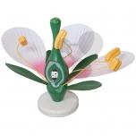 Model květu dvouděložné rostliny L