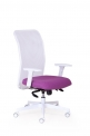 Zdravotní ergonomické kancelářské křeslo (židle) Techno Medica Balance Peška - SLEVA nebo DÁREK a DOPRAVA ZDARMA